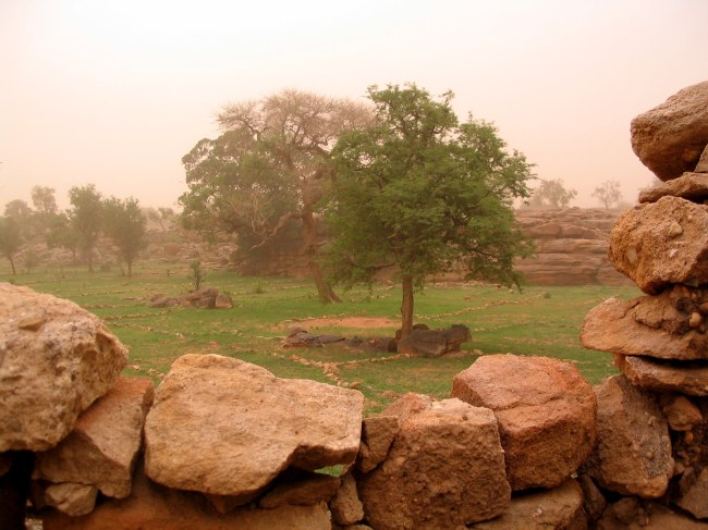 landscape image of Dogon Country in Mali